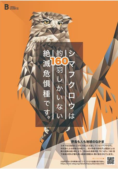 일본전자전문학교 ACA 세계 학생 대회 3.JPEG